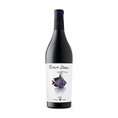 2016- CUEVELLANA SHIRAZ -S-6PACK